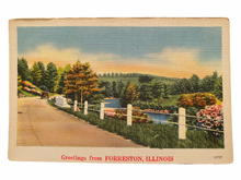 Load image into Gallery viewer, Greetings From Forreston Illinois. Unused Linen Postcard Circa 1930-1944