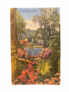 Beautiful Azaleas Florida Cypress Gardens. Unused Linen Postcard Circa 1930-1944
