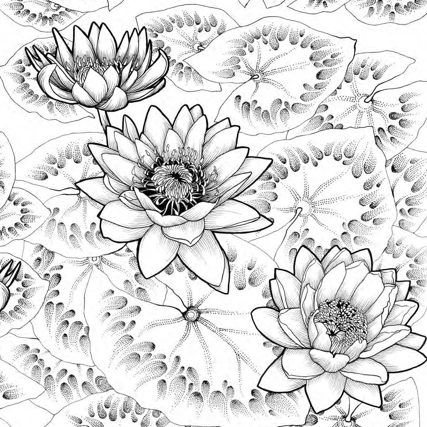 Where The Wildflowers Grow Coloring Book