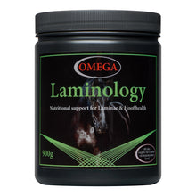Load image into Gallery viewer, Omega Laminology