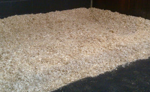 Dutch White Shavings - Click + Collect Only