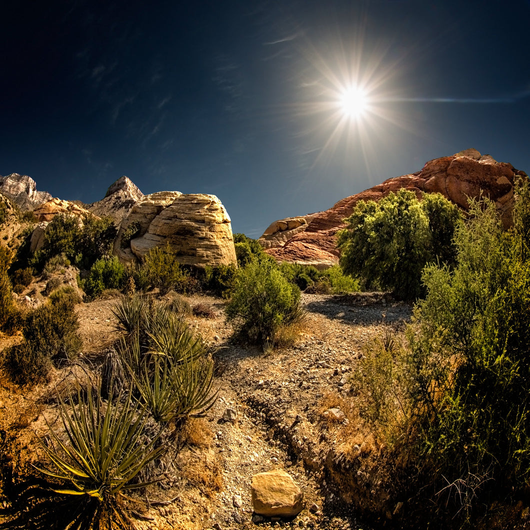 Red Rock Scenic - USED