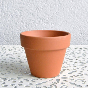 Terracotta Pots - 5cm - Set of 10