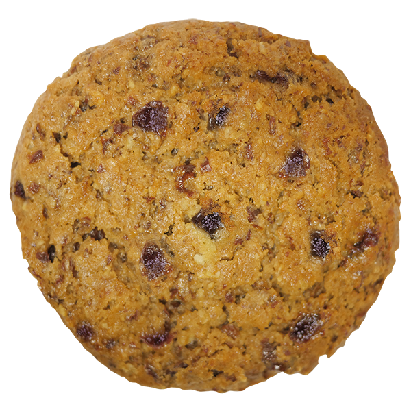 Healthy Oatmeal Raisin- Noony Cookie Co.