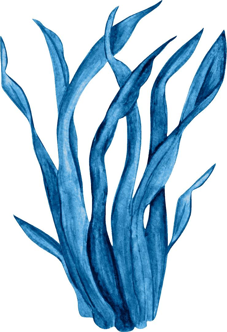 Blue Seaweed #2 Wall Decal Watercolor Seaweed Sea Life Marine Algae Deep Sea Ocean Wall Sticker | DecalBaby