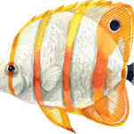 Copperband Butterflyfish Fish Wall Decal Watercolor Tropical Exotic Marine Fish Wall Sticker | DecalBaby