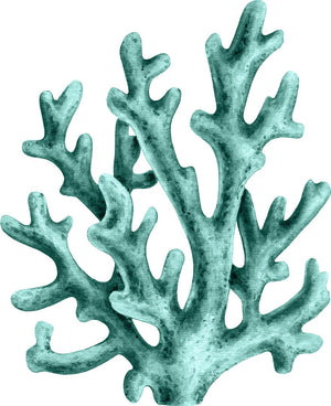 Watercolor Seafoam Green Coral Wall Decal Coral Reef Sea Life Marine Deep Sea Ocean Wall Sticker | DecalBaby