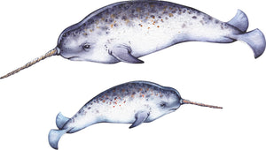 Mother & Baby Narwhal Wall Decal Set of 2 Removable Fabric Vinyl Wall Stickers