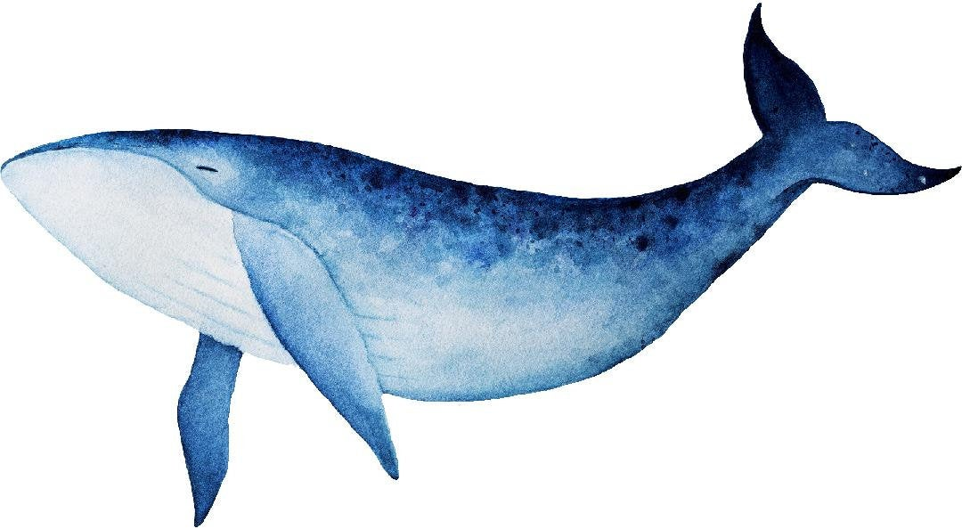 Watercolor Blue Whale Wall Decal Removable Sea Animal Fabric Vinyl Wall Sticker