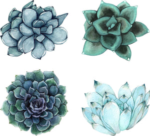 Watercolor Blue Succulents Wall Decal Set of 4 Floral Removable Fabric Vinyl Wall Stickers