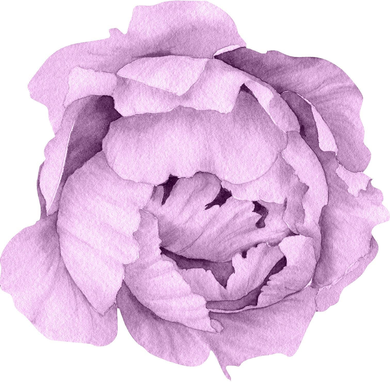 Purple Peony #15 Wall Decal Removable Fabric Vinyl Flower Wall Sticker for Baby Girl Floral Nursery Room Decor