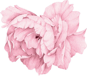 Light Pink Peony #21 Wall Decal Removable Fabric Vinyl Flower Wall Sticker for Baby Girl Floral Nursery Room Decor