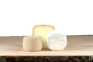 Sheeps and Goat's cheese taster set gift box UK