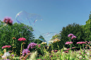 Soapbubble Studies - Monets Garden