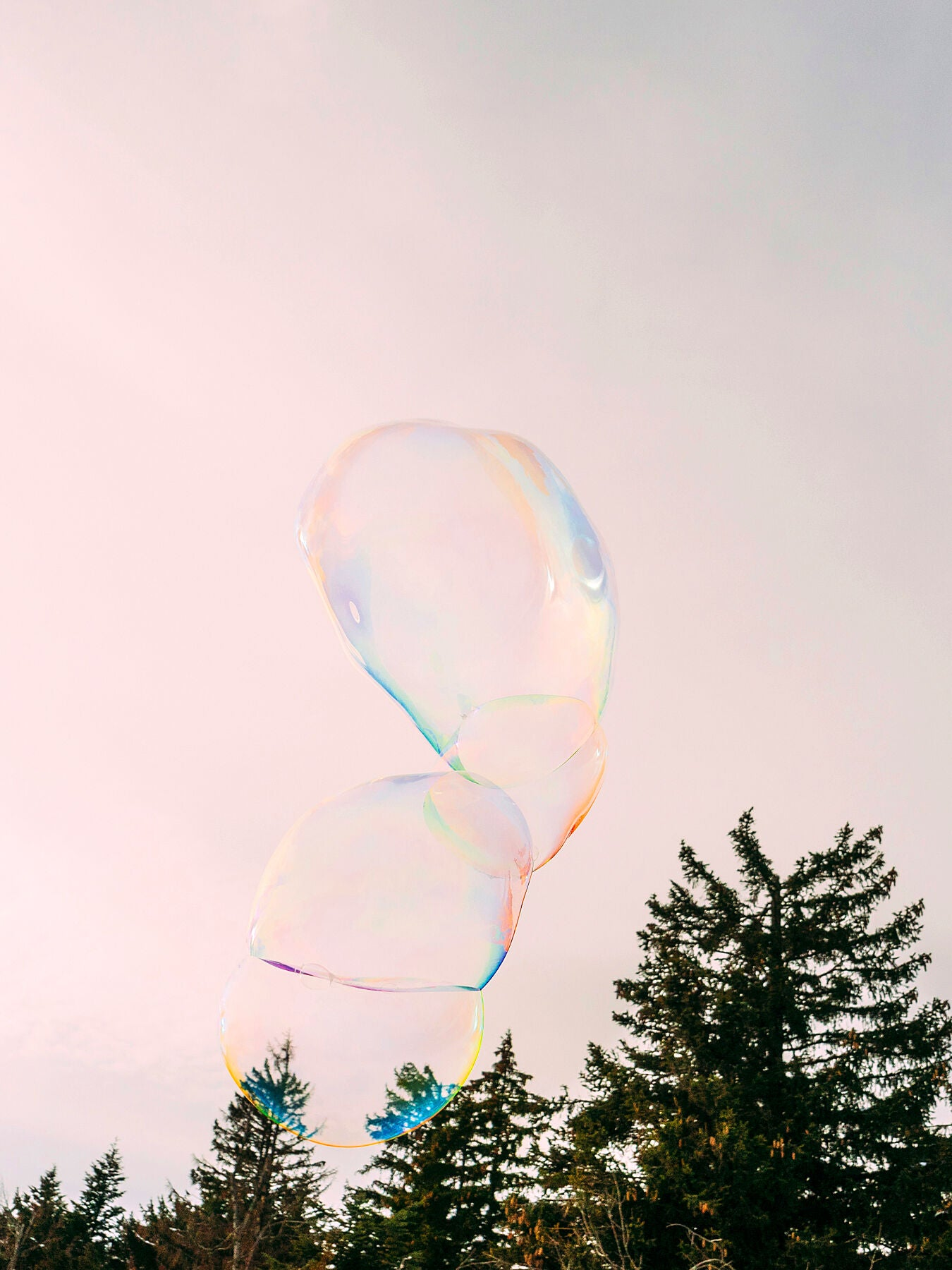 Soapbubble Studies-Hohe Wand