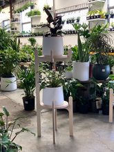 Load image into Gallery viewer, IsoKing Pot Plant Stand