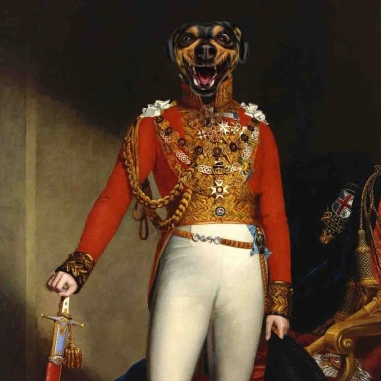 BONAPARTE - Aristocracy Family