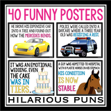 PUN CLASSROOM POSTERS