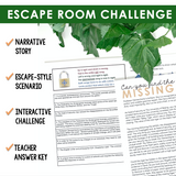 COLONS GRAMMAR ACTIVITY INTERACTIVE ESCAPE CHALLENGE