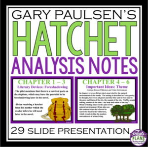 HATCHET ANALYSIS NOTES PRESENTATION