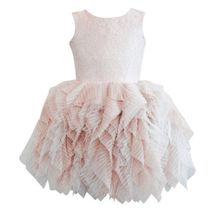 Blush Lace and Tulle Dress