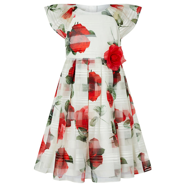 Valentine Striped Rose Dress