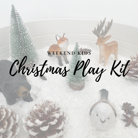 Christmas Winter Play Kit