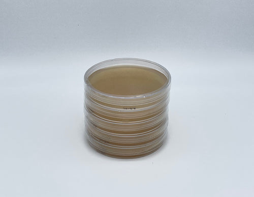 5 Light Malt Extract Agar Petri Dishes