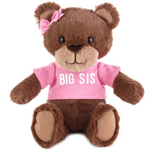 Load image into Gallery viewer, Big Sis Teddy Bear Stuffed Animal, 9""