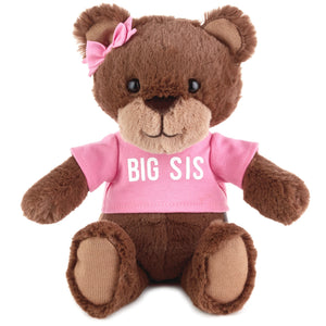 Big Sis Teddy Bear Stuffed Animal, 9""