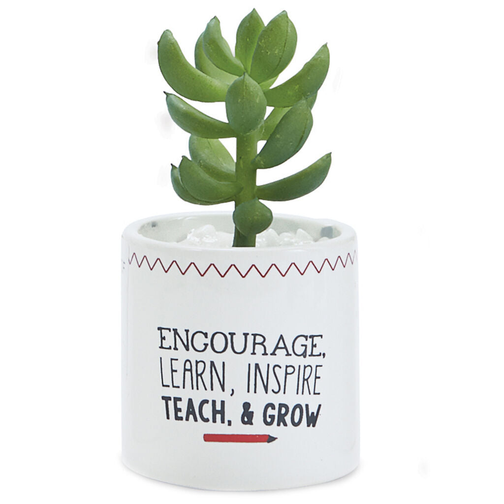 Mud Pie Encourage Teach Grow Faux Succulent Planter