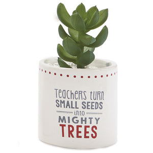 Mud Pie Seeds to Trees Faux Succulent Planter