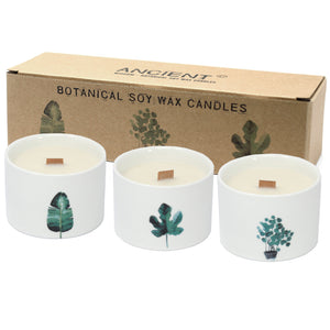 RRP £28 Set of 3 Soy Wax Botanical Candles with Wooden Wicks in Ceramic Jars ~ Medium ~ Japanese Garden