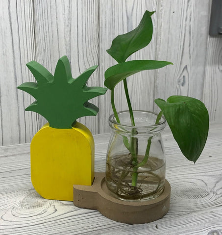 Hydroponic Pot (Vase) - Pineapple - Recycled materials.