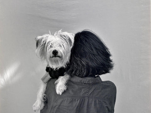 LILLY SHAHRAVESH AND HER MUSE RABBIT CREATIVE DIRECTOR OF LISH LUXURY PET FASHION BRAND