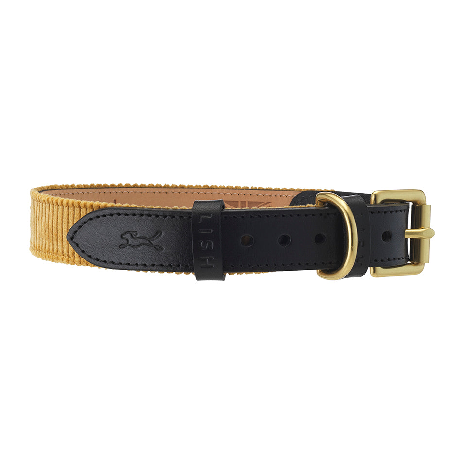mustard yellow cotton corduroy designer dog collar with black italian leather by LISH