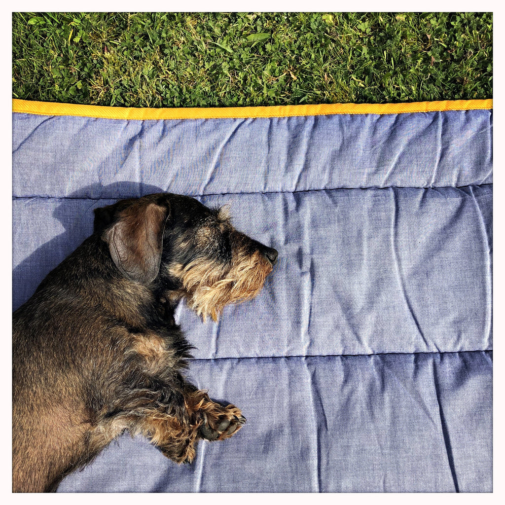 Douglas Doggy Duvet - LISH Dog Luxury Fashion and Accessories