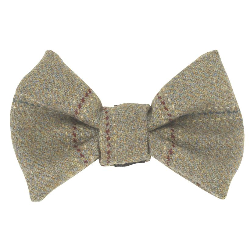 Bow Wow Dog Bow Tie - Digby - LISH Dog Luxury Fashion and Accessories