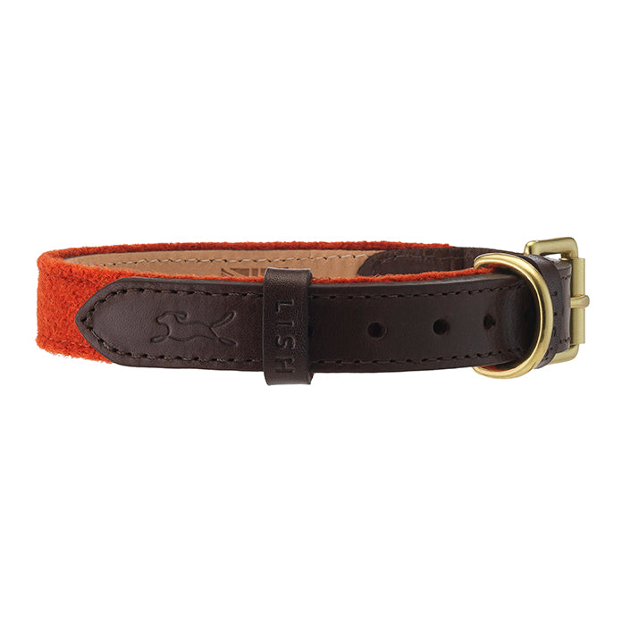 Orange harris tweed designer dog collar with brown leather trim by LISH