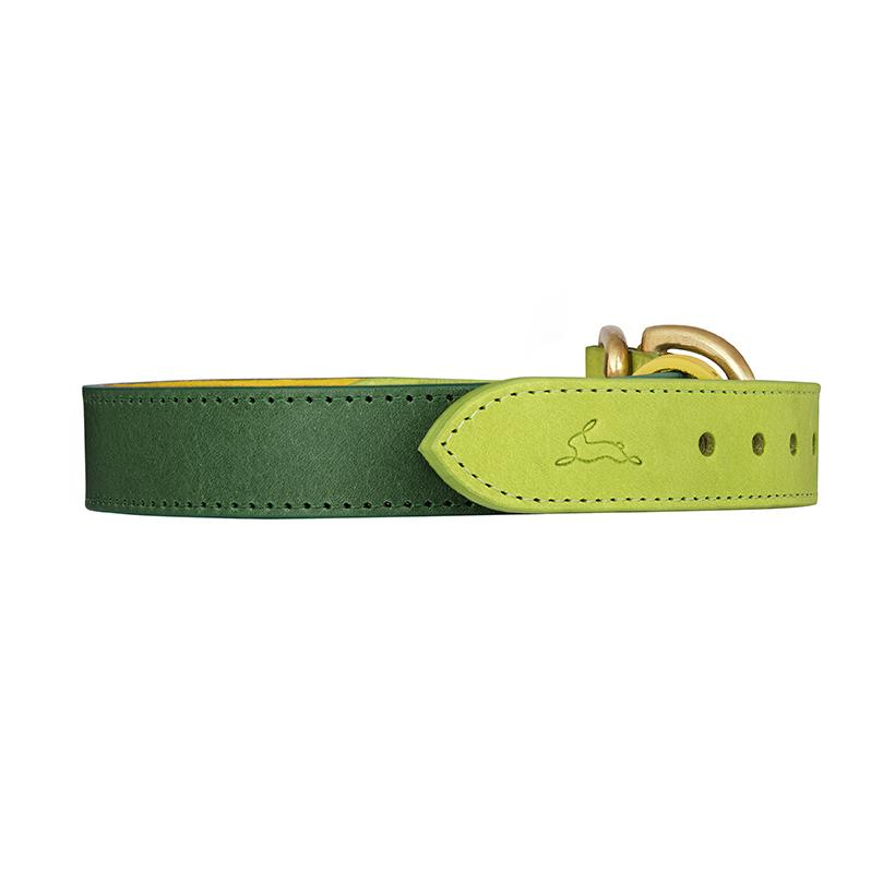 Leonard Lime Leather Dog Collar - LISH Dog Luxury Fashion and Accessories