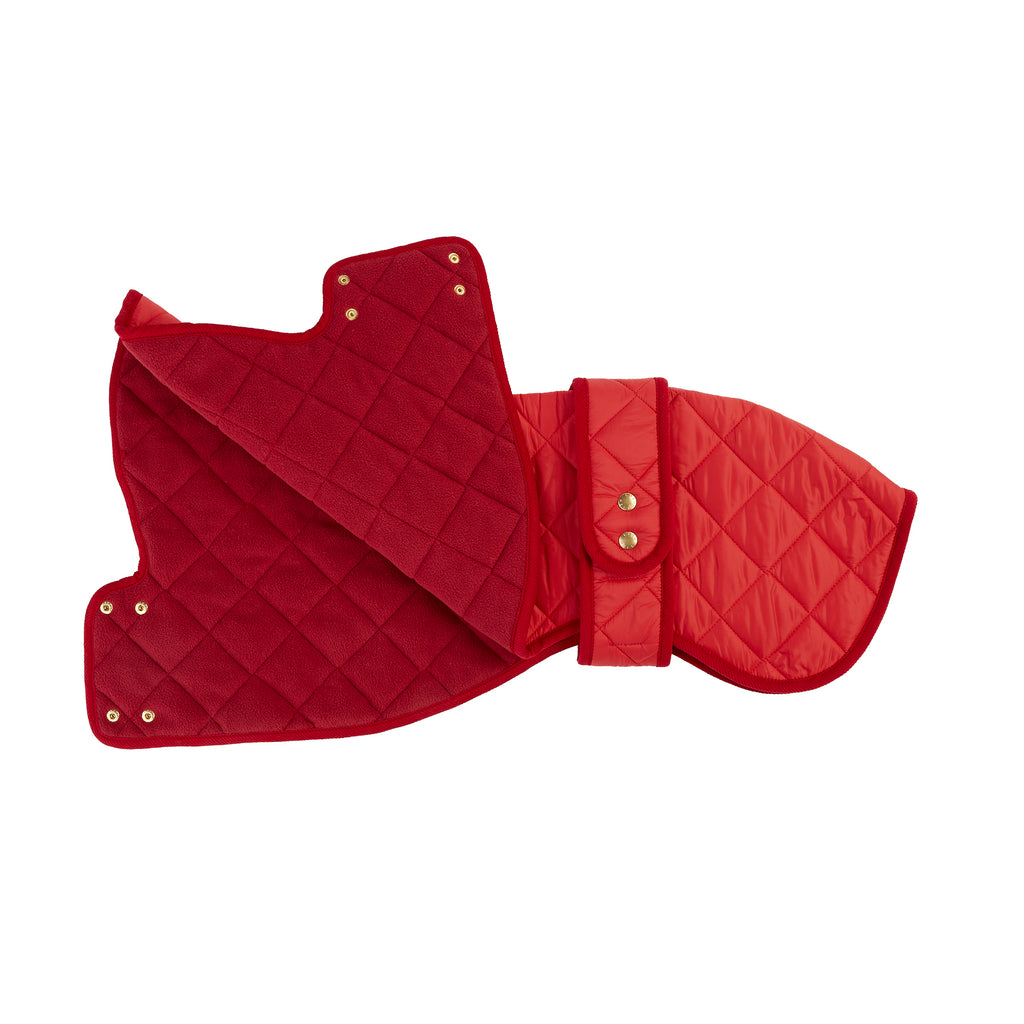 red quilted luxury whippet dog coat by LISH designer pet wear