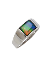 Load image into Gallery viewer, Martin 14kt White Gold Ring