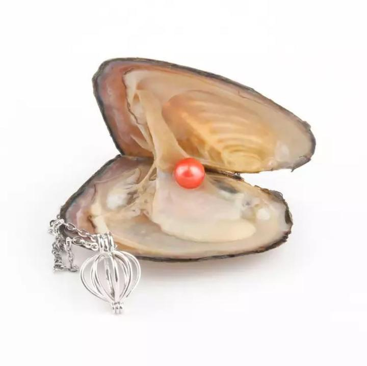Natural Oyster Pearl Necklace【💜 Comes with gift box】