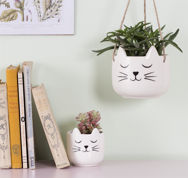 Cats Whiskers Hanging Planter