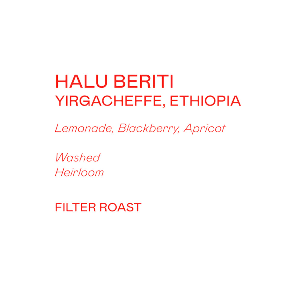Grey Roasting Co Halu Beriti Washed