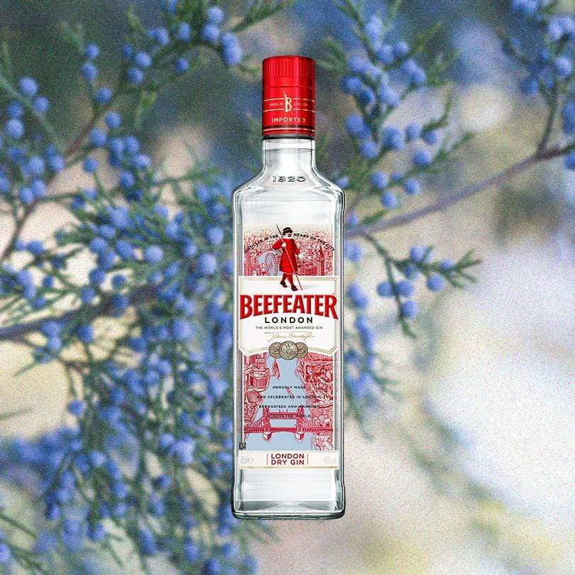 Bottle of Beefeater Long Dry Gin over backdrop of blue flowers
