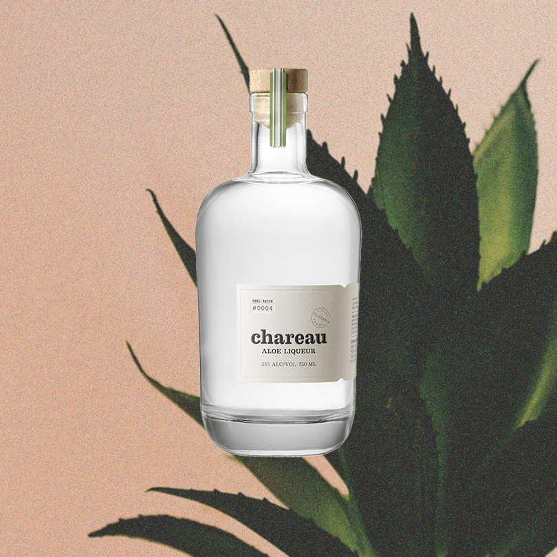 Bottle of Chareau Aloe Liqueur light sky backdrop with faded plant.