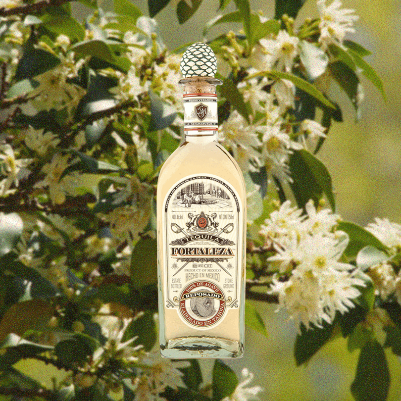 Bottle of Fortaleza Tequila Reposado imposed over a faded plant with white flowers