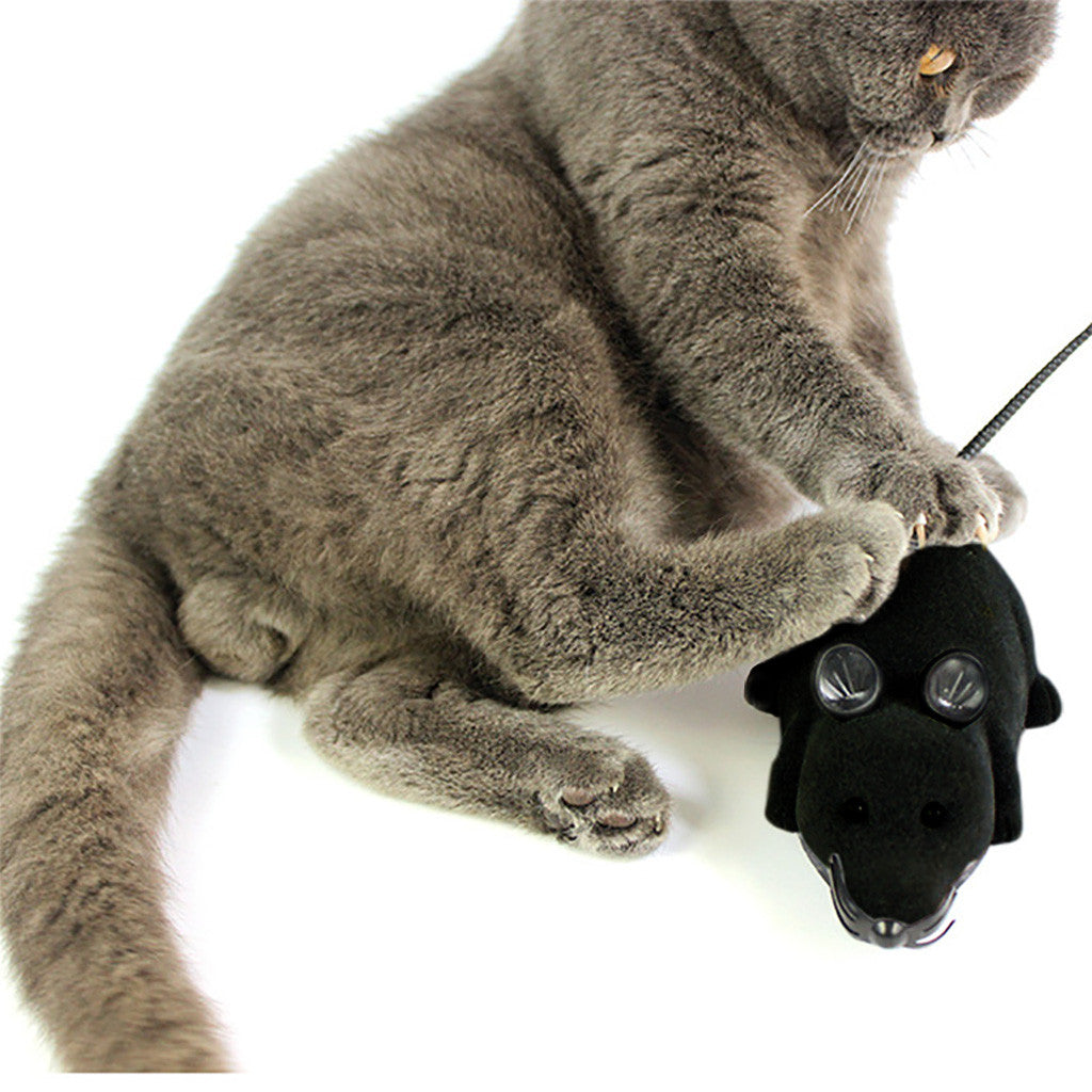 Electric Remote Control Mouse Remote Control Animal Toys Pet Cat Toys