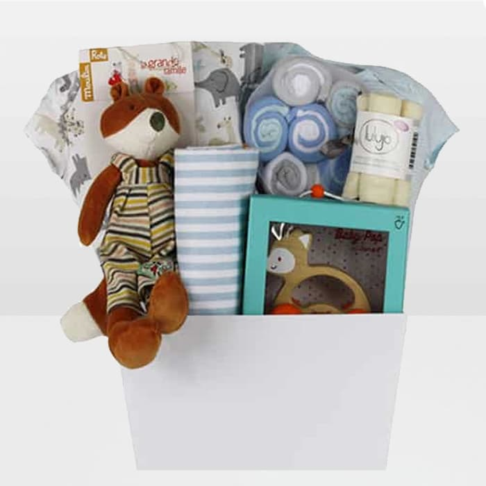 Fox For Baby Boy Gift Basket